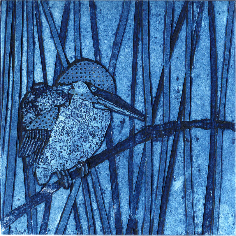 Kingfisher in the Reeds