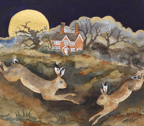 late evening the hares did run