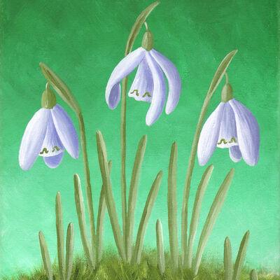 Three Snowdrops in Grass