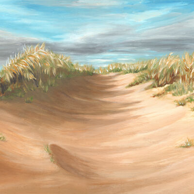 Evening Sun, West Sands Dunes