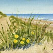 Dandelions in the Dunes