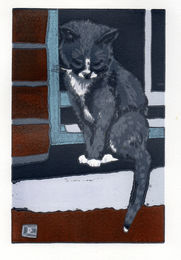 Drusilla Cole 'Cat on a Sill'
