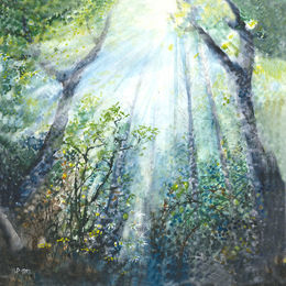 Tim Phillips Light Fall