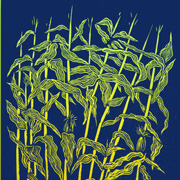 Drusilla Cole Maize ( indigo)
