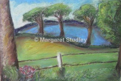 Blue Field At Mannington
