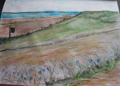 Bluebells, Sea and Railway Line