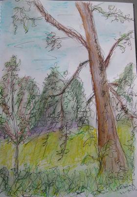 Felbrigg Tree