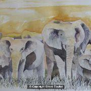 elephant-group-2