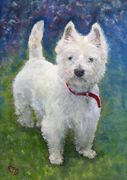 HOLLY - West Highland Terrier