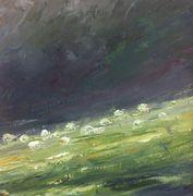 Sheep Lower Swell