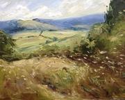 Swifts Hill, from Slad