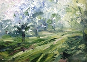 Plum orchard, Brockworth