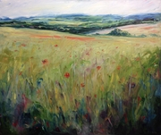 Fields bloom red
