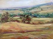 Summer fields, Guiting Power