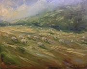 Sheep, Yanworth