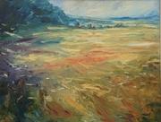 Summer fields above Sherborne