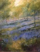 Bluebells, Oddington