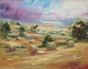 Bales, Windrush