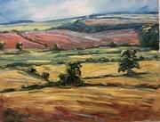 Rissington fields