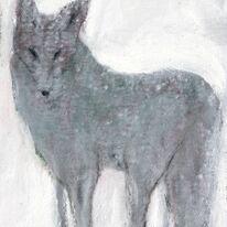 Fox on White