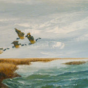 Flight over the marshes - Sold