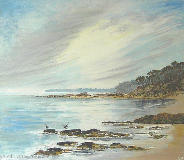 Cormorants on the  Rocks