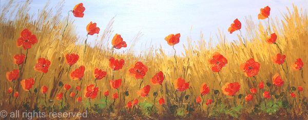 Natural Poppy Field2