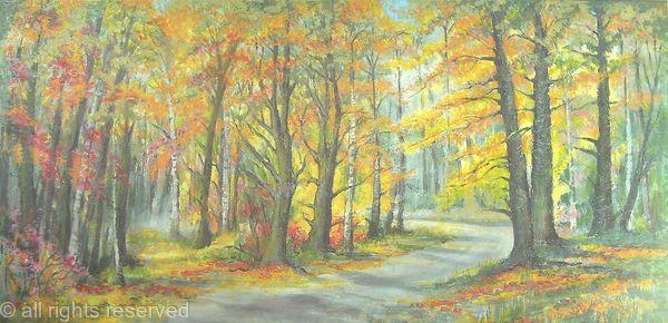 Sunny Autumn Woodland Colours