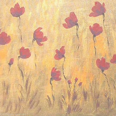 Dusky Poppy field