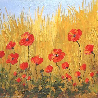 Natural Poppy Field