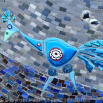 Cheeky Blue Bird
