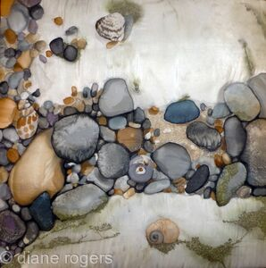 Shells and Pebble Rock Pool