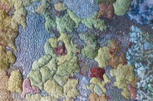 Map of Lichen
