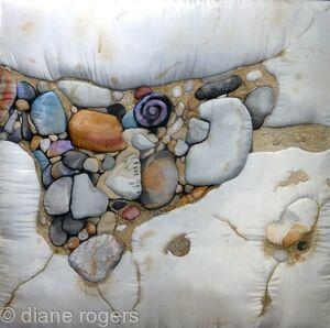 Purple Shell Rock Pool