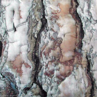 Rust Bark