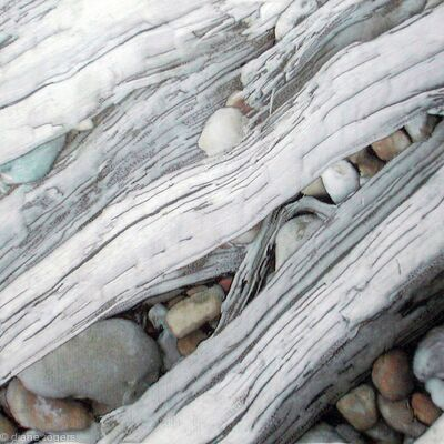 Pebbles and Driftwood