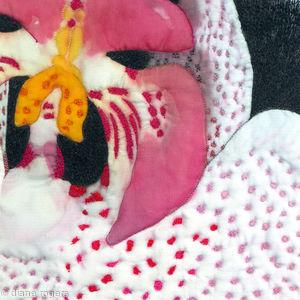 Spot Orchid