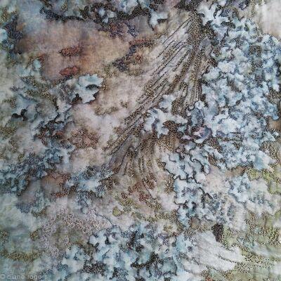 Old Chapel Tree Bark