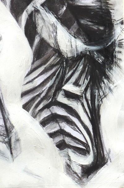 Zebra, detail.