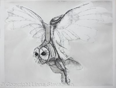 Owl, light.