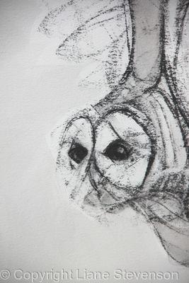 Owl, light, detail.2.