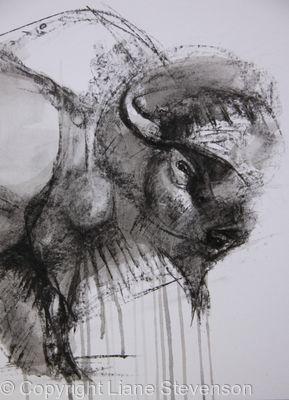 Buffalo.2, detail