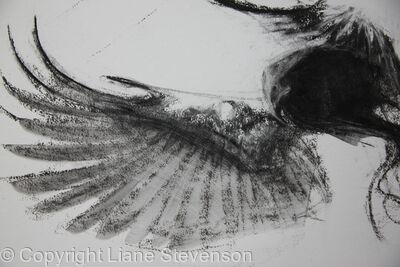Dark Bird, detail.