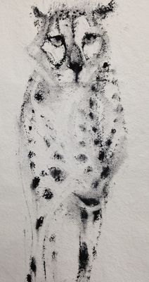 Cheetah, long. Detail