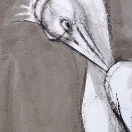 Pelican, preening; detail.