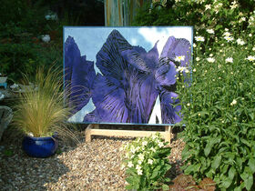 Iris Diptych, participating in Warwickshire Arts Week 2006