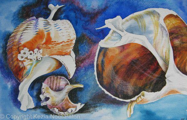 Broken Sea Shells Conversing