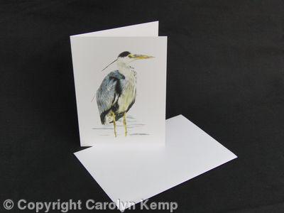 Grey Heron - Silently Watching