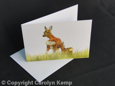 Roe Deer - Mother and Daughter