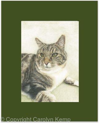 95. Cat - Contentment
